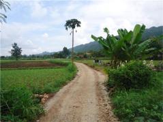 Jalan Sawah PNPM